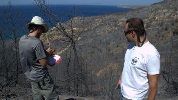 Η δασική ομάδα του WWF στην επιτόπια αυτοψία στη Χίο. Photo: Μαριάννα Καρίβαλη