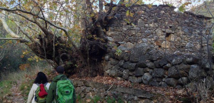 Τουρισμός και βιοποικιλότητα στη Χίο